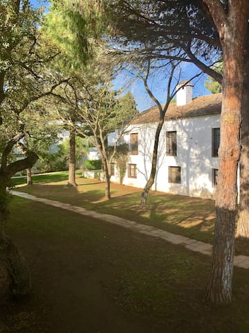 Casas Cortijo, Valderrama Golf - San Roque - Apartment
