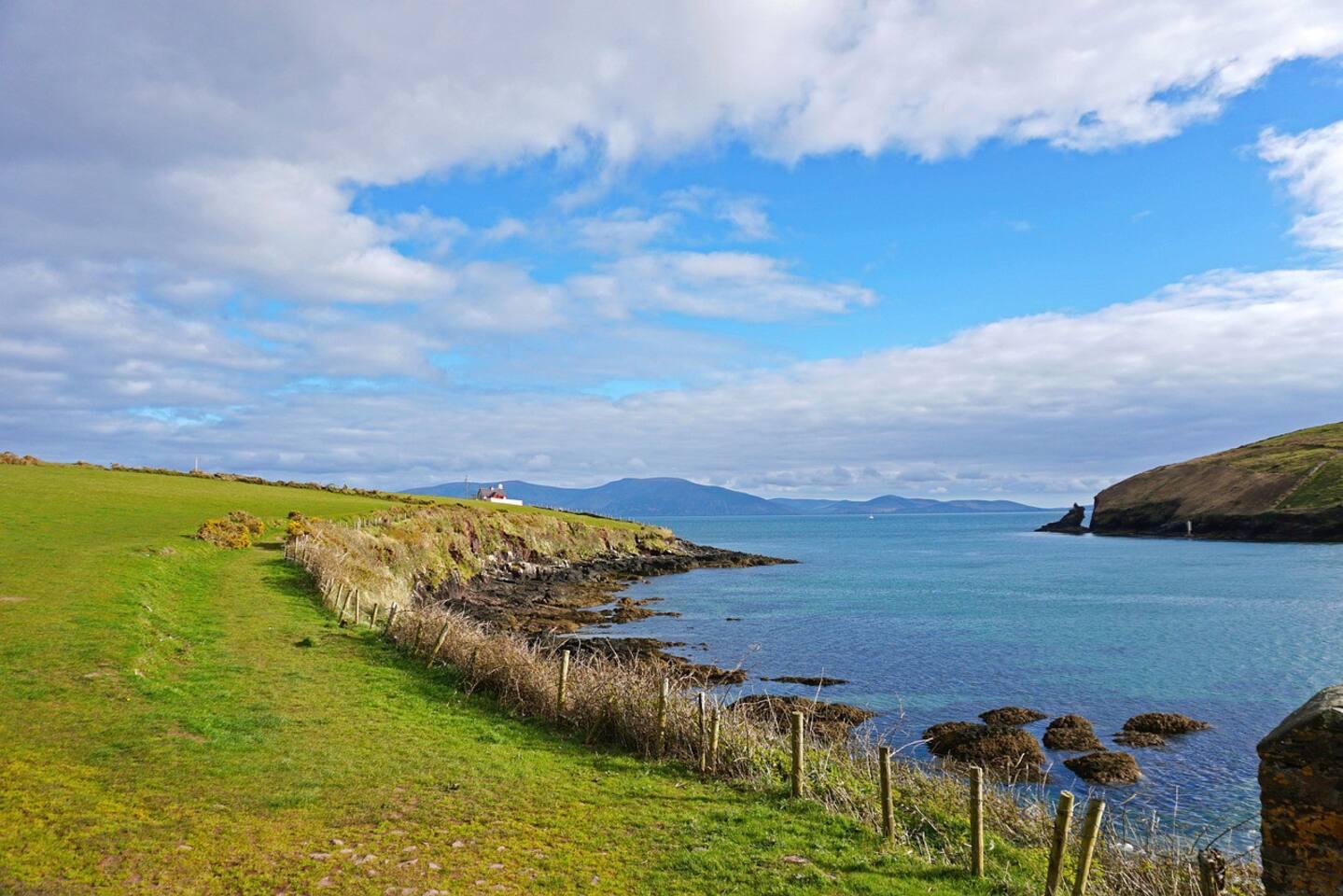 Walk along Dingle harbour to the lighthouse, Slaudeen beach & see Fungi, the Dingle Dolphin