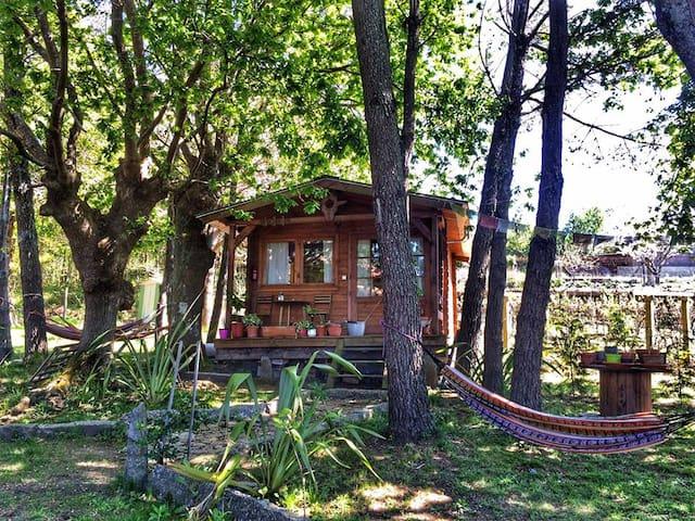 Acogedor bungalow en Galicia - Penaboi - Bungalow