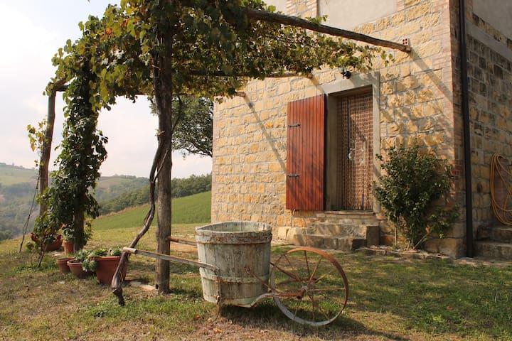 Antico casolare immerso nel verde - Casina - Villa