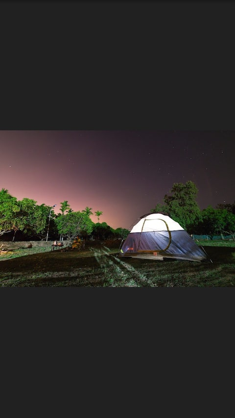 BlueMango  Campsite| Cafe