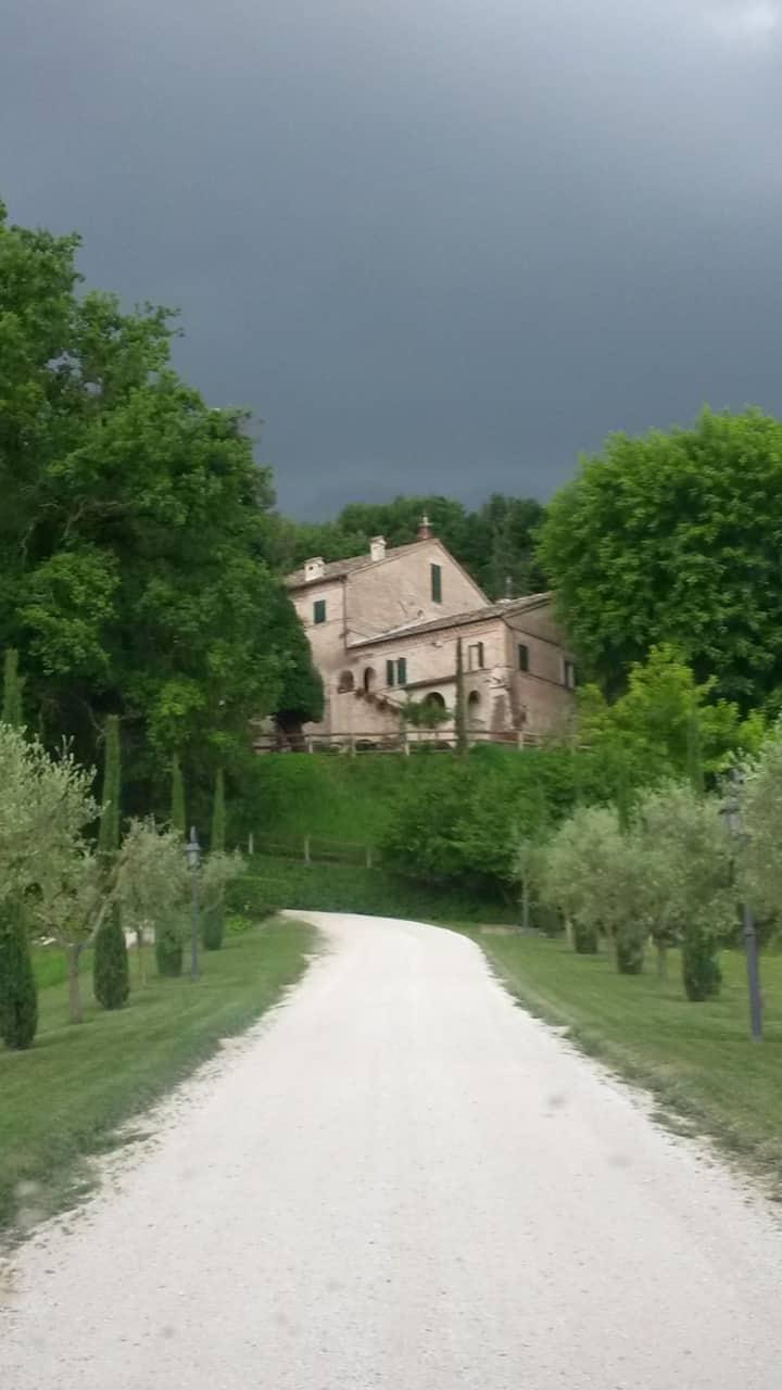Relax e buona cucina, la tua vacanza nelle Marche