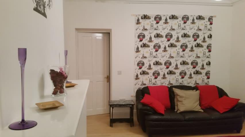 dublin(8)city/ free wifi(3) - Dublin - Apartment