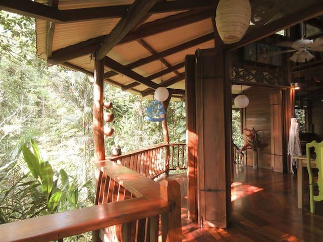 Casa Ranitas -  Stunning Jungle Hideaway