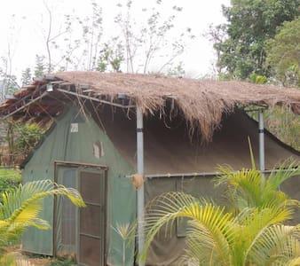 Jungle Tents in Dandeli Forest - Full Board Included