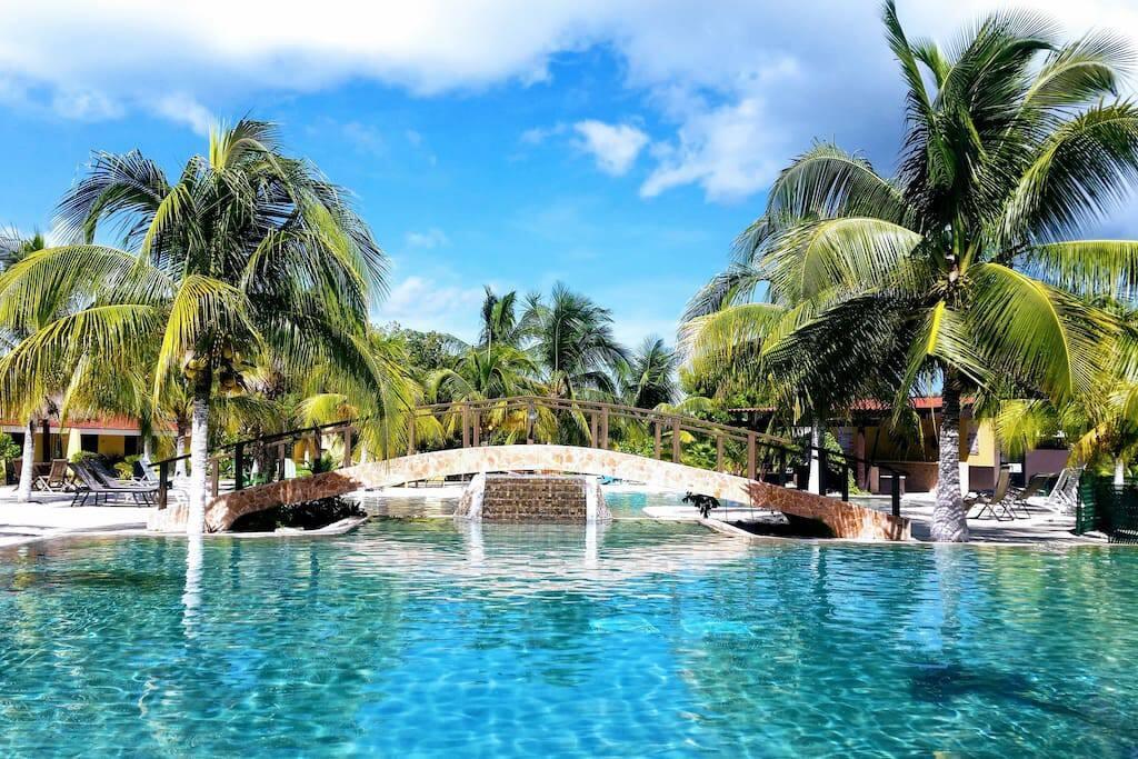 Piscina y bienestar Toallas de playa / piscina