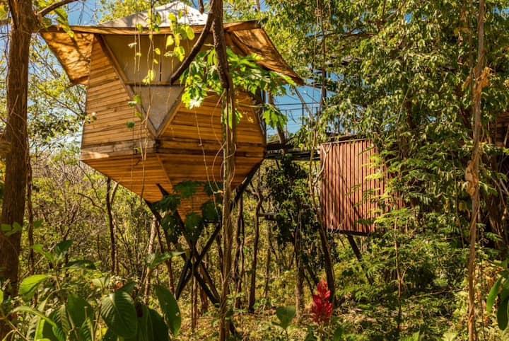 Oceanview Sacred Geometry Tree House Pod