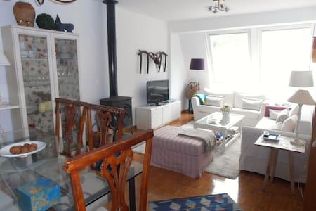 Precioso apartamento en Ezcaray - Ezcaray - Lejlighed
