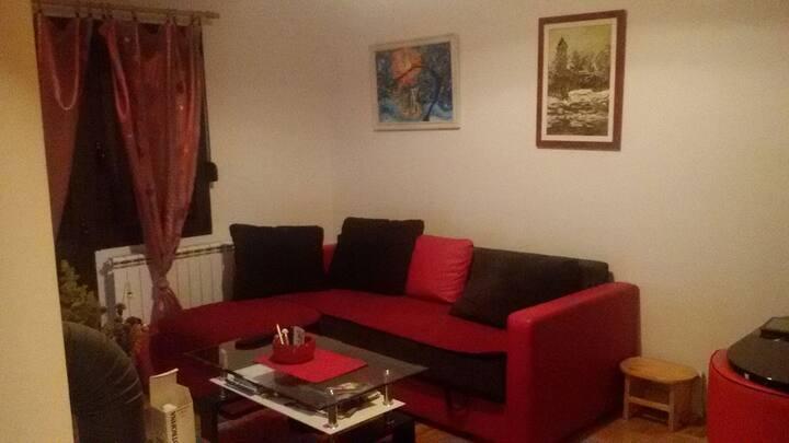 Apartment Minic