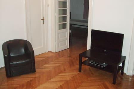 Big flat 100 m2 Cismigiu Parc - Parliament - Бухарест - Квартира