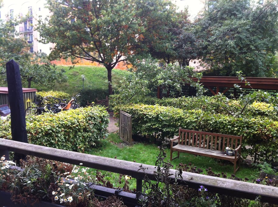 View from balcony towards private garden and shared yard