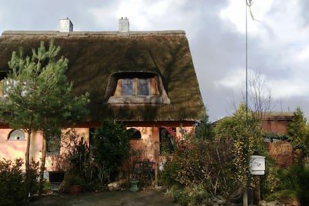Wohlfühlhus: 2. Meereslinie Ostsee - Börgerende-Rethwisch - Rumah