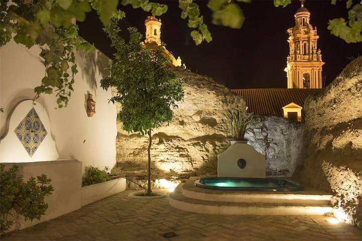 Casa spa de la Agueda - Peñaflor - Casa