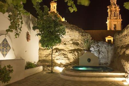 Casa spa de la Agueda - Peñaflor - Huis