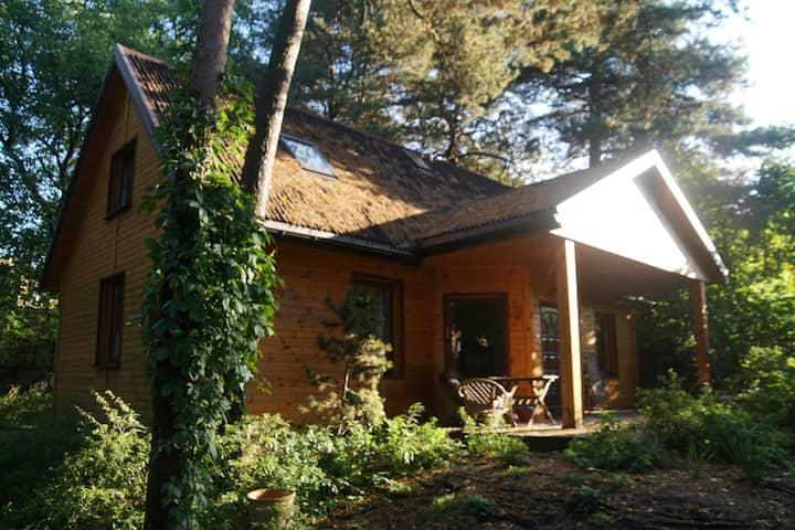Drewniany domek w Starachowicach.