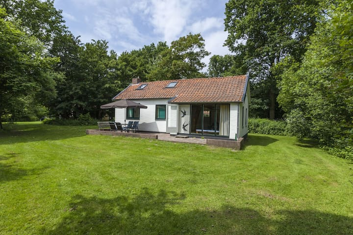 Cosy holiday home with sunny garden near the North-Sea beach of Vrouwenpolder