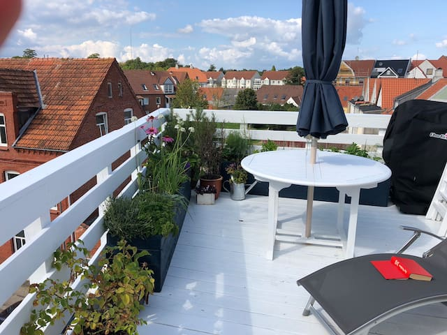 Cozy roof top appartment