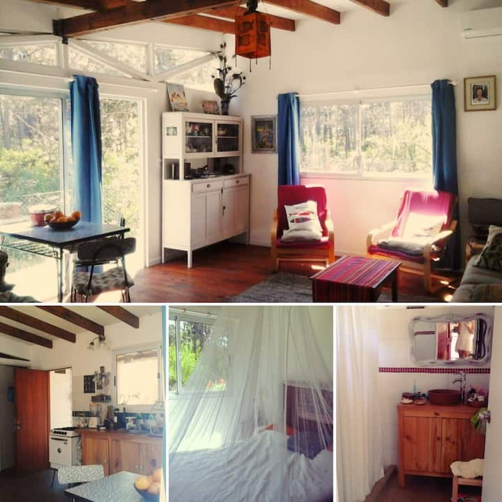 Lil´ house in the maritime woods in La Paloma