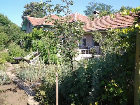 Experiência rústica na aldeia búlgara