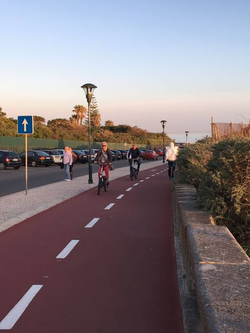 Bicycle rental is available in the beginning of the running and bicycle paths, which is 5 mins from the apartment.