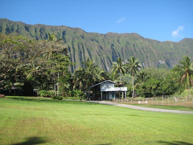 Open Palms Plantation Guesthouse