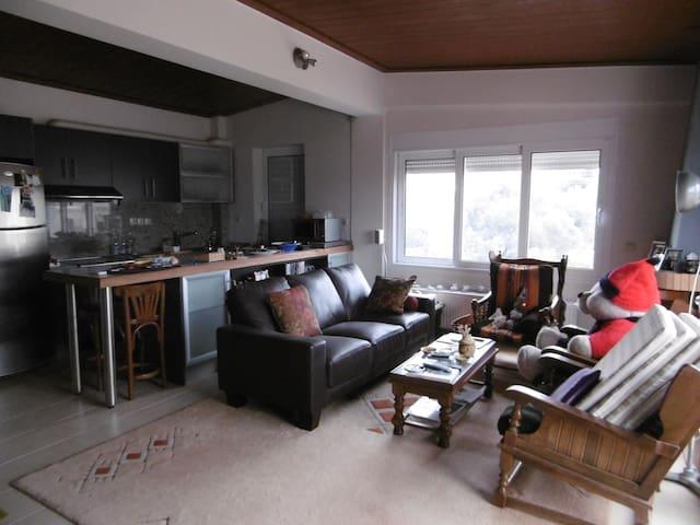 Ηλιόλουστο Διαμέρισμα - Leontario - Apartamento