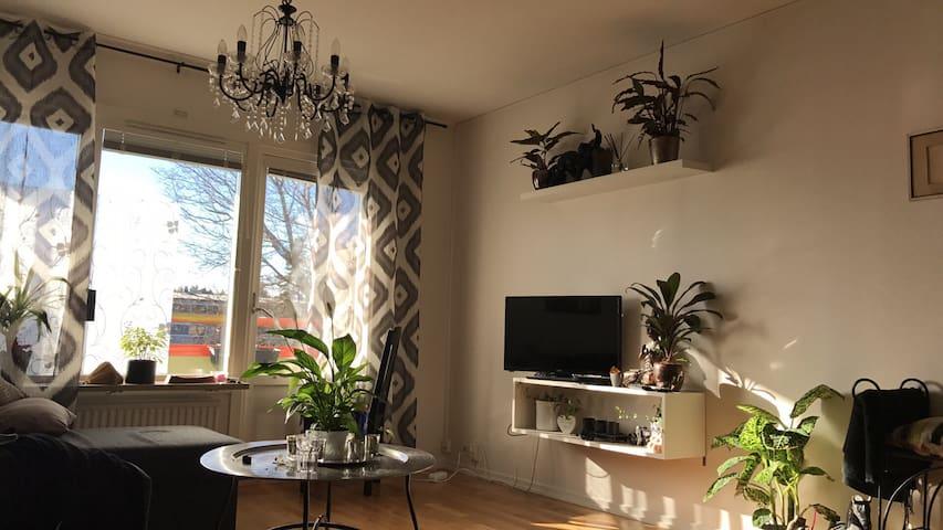 Ljus genomgående 2rums lägenhet. - Visby - Apartment