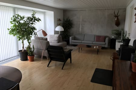 5 minutes walk from the beach. Large outdoor area - Thisted - 独立屋