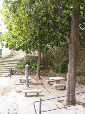 Mini casa delle magnolie - Marciana - Byt