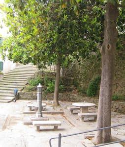 Mini casa delle magnolie - Marciana