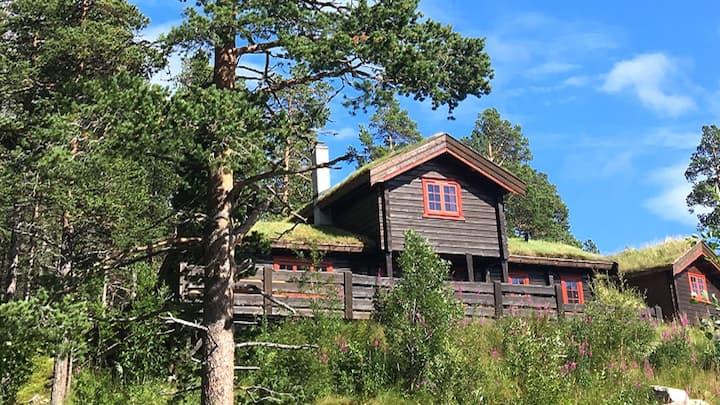 Mountain Cabin - Hallingskarvet - Hardangervidda