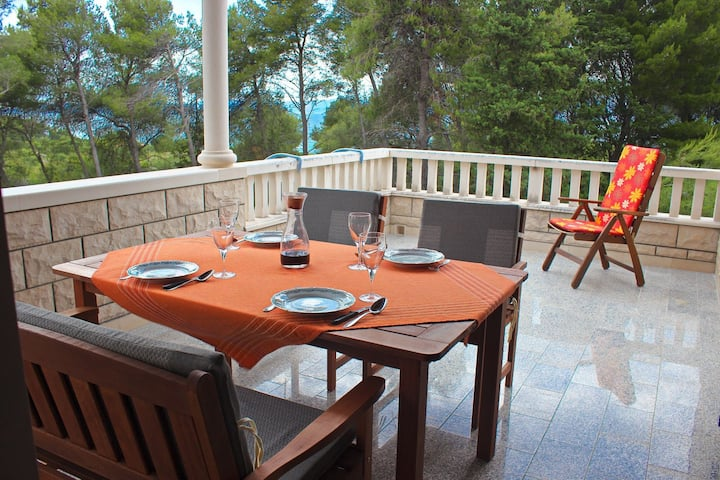 Apartment Pez - with large terrace : A1(4+1) Mirca, Island Brac