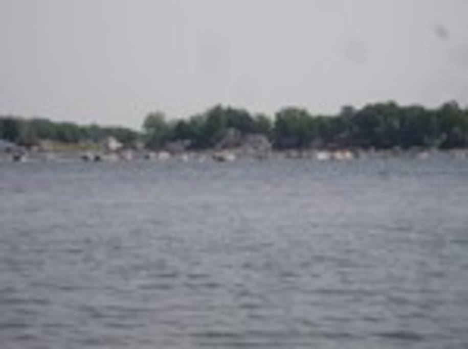 View of popular sandbar on Round Lake - great for swimming, playing, and hanging out!
