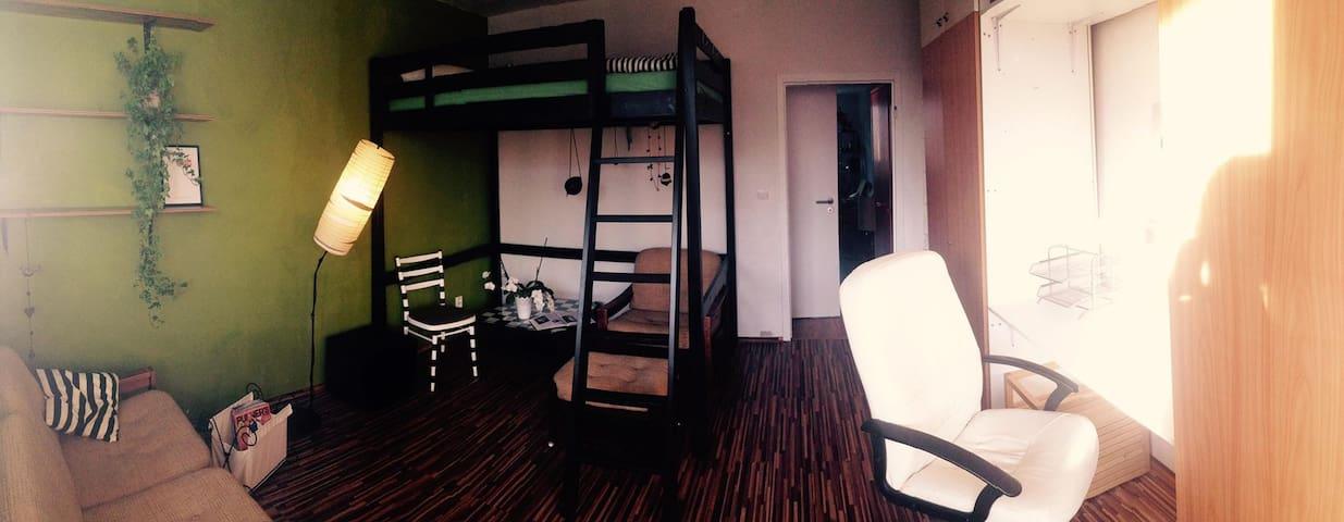 Funky spacious room w. balcony and free breakfast! - Bratysława - Apartament