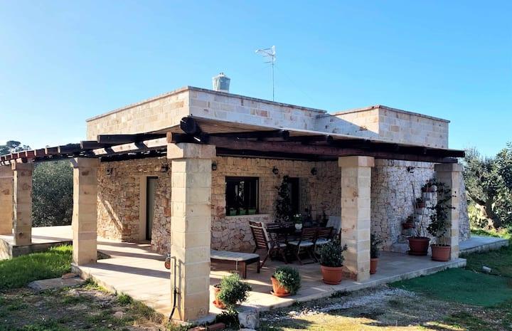 La Casa sulla Roccia - Villa Lamia, renovated villa in stone,Wi-Fi,BBQ,A/C