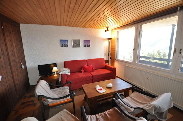 Nice 2 rooms apartment near the ski slopes, beautiful view