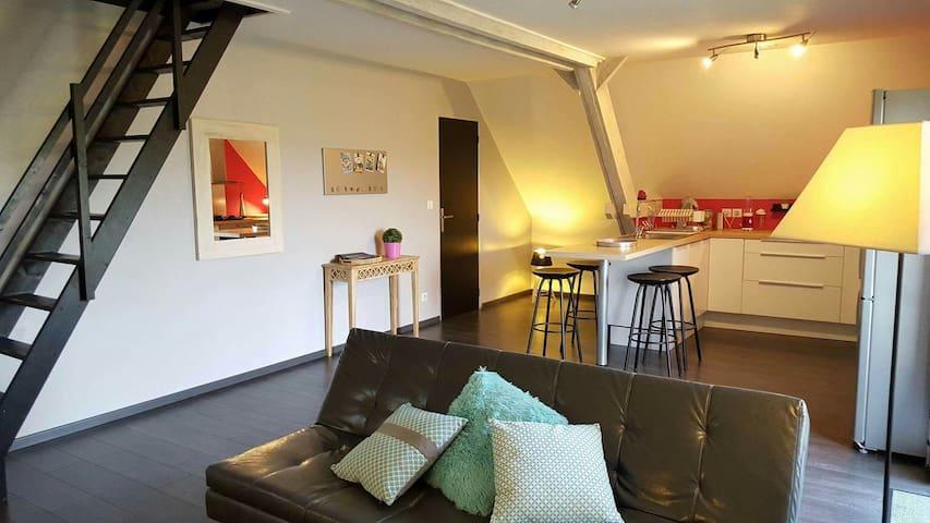 duplex cocooning - Bailleul - Apartment