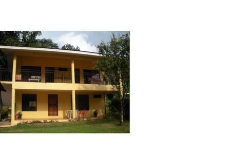 Apartamento En Dominical De OSA (B)