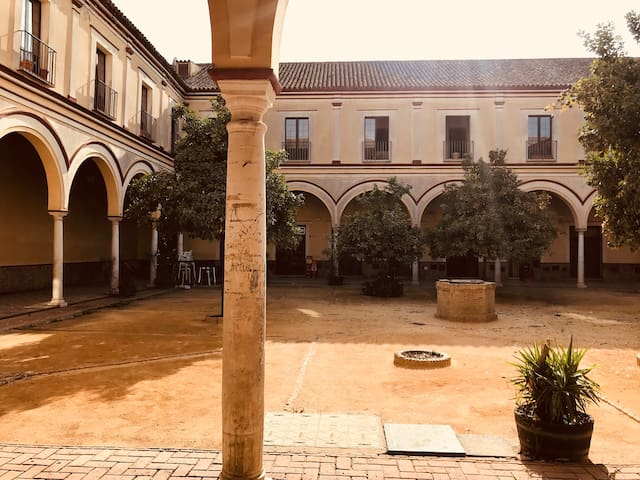 Preciosa casa baja en pleno casco histórico