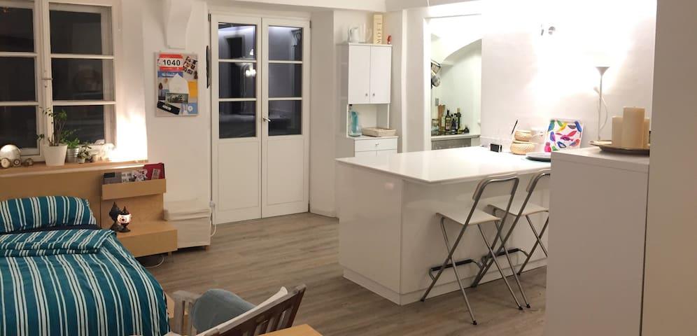 Tolles 1-Zimmer-Apartment mitten in der Altstadt - Ingolstadt - Pis