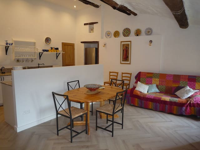 2-bed apartment in stone farmhouse close to Ceret - Reynes - Apartment