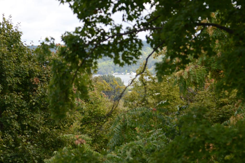 Bedroom's distant view through beautiful foliage of Cayuga Lake.