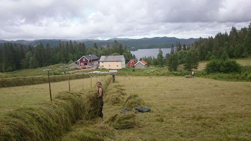 Slettvoll Gård - Gjølga - 別荘