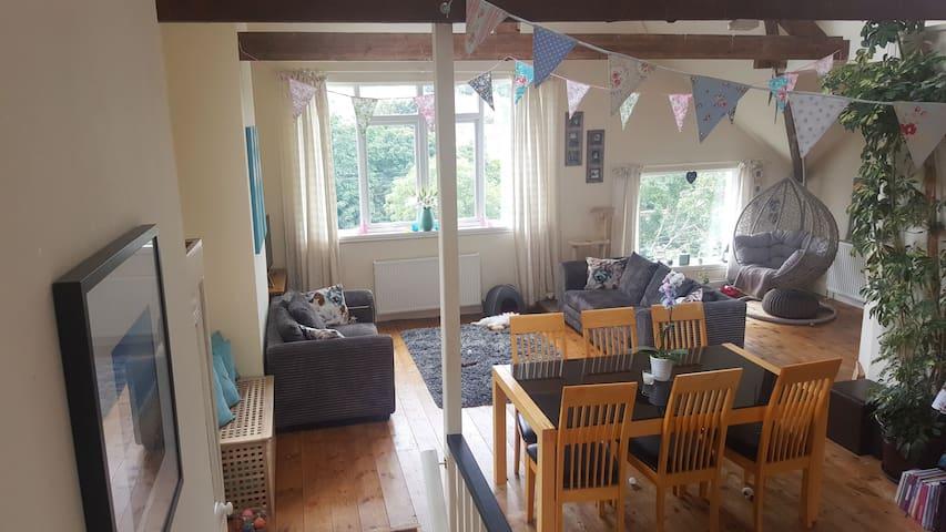 Victorian Loft Apartment, Sml Cozy Double Rm. B&B