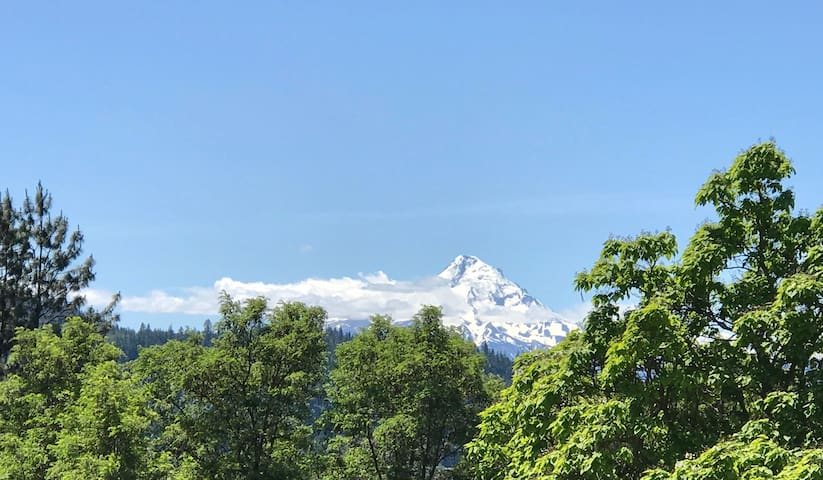 Mt Hood in spring/summer from entrance.
