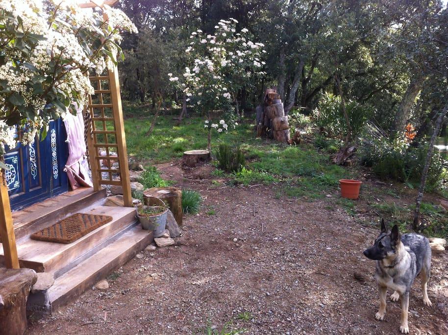 Yurta nueva en paraje natural yourtes louer campins for Piscines naturals catalunya