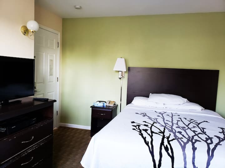 Sea Girt Lodge | Standard Room One Queen Bed