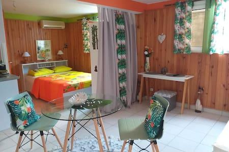 Studio cosy à 5mn de l aéroport PàP/Les ABYMES
