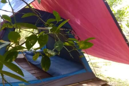 THE RAINFOREST CAMP AQISS TIOMAN