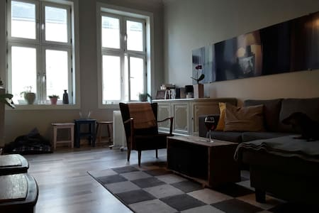 Nice place & central location - Oslo
